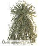 Маскировочная трава для засидок Otter Outdoors, цвет зеленый