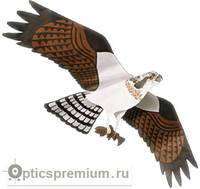 Комплект воздушного змея Скопа, Jackite Inc. (США)